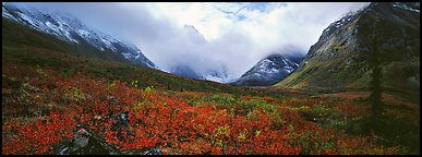 Brooks range landscape in the fall. Gates of the Arctic National Park (Panoramic color)