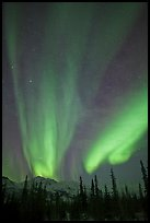 Northern lights over Brooks Range mountains. Gates of the Arctic National Park, Alaska, USA. (color)