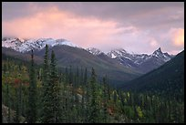Arrigetch Peaks from Arrigetch Creek entrance at sunset. Gates of the Arctic National Park, Alaska, USA. (color)