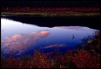 Alatna River reflections, sunset. Gates of the Arctic National Park, Alaska, USA. (color)