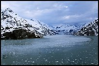 John Hopkins inlet with floating ice in late May. Glacier Bay National Park, Alaska, USA. (color)