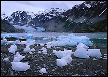 Beached icebergs and McBride Glacier. Glacier Bay National Park, Alaska, USA. (color)