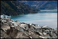 Lamplugh glacier and turquoise bay waters. Glacier Bay National Park, Alaska, USA. (color)