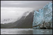 Margerie Glacier and foggy mountains surrounding Tarr Inlet. Glacier Bay National Park, Alaska, USA. (color)