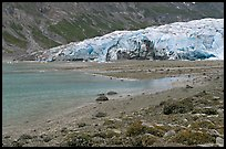 Beach and Reid Glacier. Glacier Bay National Park, Alaska, USA. (color)