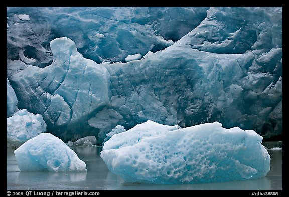 Icebergs and blue ice at the base of Reid Glacier. Glacier Bay National Park, Alaska, USA.