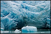 Iceberg and blue ice cave at the base of Reid Glacier. Glacier Bay National Park, Alaska, USA. (color)