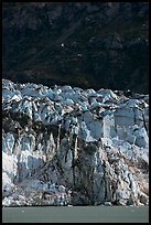 Front of Lamplugh glacier. Glacier Bay National Park, Alaska, USA. (color)