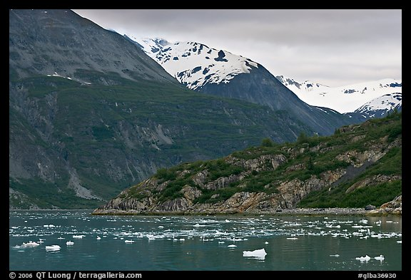 Ice-chocked cove in Tarr Inlet. Glacier Bay National Park (color)