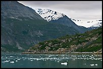 Ice-chocked cove in Tarr Inlet. Glacier Bay National Park ( color)