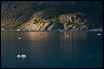Icebergs and spot of sunlight on slopes around Tarr Inlet. Glacier Bay National Park ( color)