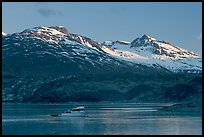 Small boat in Tarr Inlet, early morning. Glacier Bay National Park ( color)