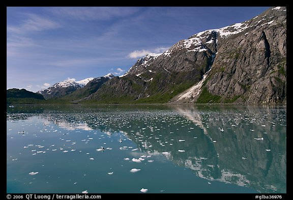 Icebergs and reflections in Tarr Inlet. Glacier Bay National Park (color)