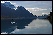 View looking out Tarr Inlet in the morning. Glacier Bay National Park ( color)