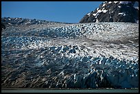 Reid Glacier. Glacier Bay National Park, Alaska, USA. (color)