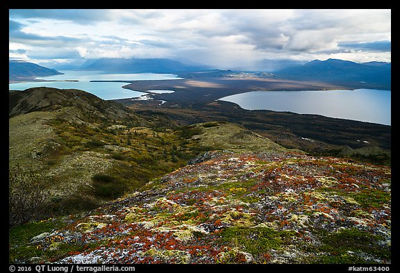 Naknek Lake and Brooks Lake from Dumpling mountain in autum. Katmai National Park (color)