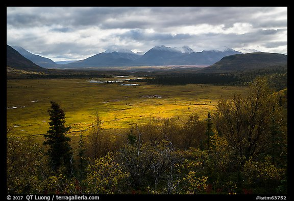 Shaft of light over tundra meadow downstream of Valley of Ten Thousand Smokes. Katmai National Park (color)
