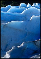 Ridges of blue ice at the terminus of Exit Glacier. Kenai Fjords National Park ( color)