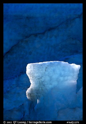 Glacial ice detail at the terminus of Exit Glacier. Kenai Fjords National Park (color)