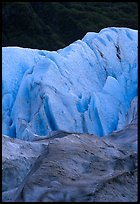 Exit Glacier and forest. Kenai Fjords National Park ( color)