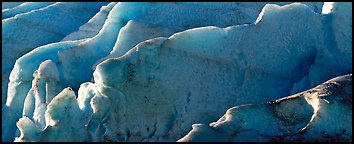 Ice fins on Exit Glacier. Kenai Fjords National Park (Panoramic color)