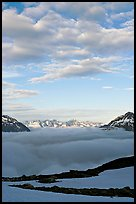 Sea of clouds and craggy peaks. Kenai Fjords National Park ( color)