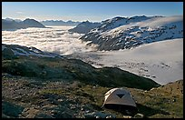 Camping in tent above glacier and sea of clouds. Kenai Fjords National Park, Alaska, USA.