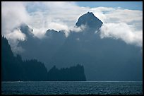 Peak emerging from the fog above bay waters. Kenai Fjords National Park ( color)