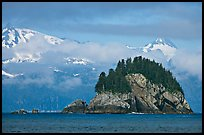 Rocky islet and snowy peaks, Aialik Bay. Kenai Fjords National Park, Alaska, USA. (color)