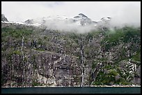 Wall of waterfalls streaming into Cataract Cove, Northwestern Fjord. Kenai Fjords National Park ( color)