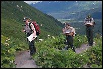 Women Park rangers on trail during a field study. Kenai Fjords National Park, Alaska, USA. (color)