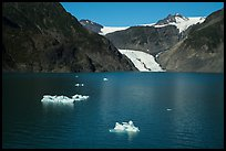 Aerial View of icebergs, Pedersen Lagoon and Glacier. Kenai Fjords National Park ( color)