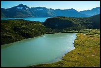 Aerial View of Pedersen Lagoon and Aialik Bay. Kenai Fjords National Park ( color)