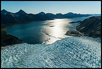 Aerial View of Aialik Glacier flowing into Aialik Bay. Kenai Fjords National Park ( color)