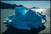 Aerial View of iceberg in Bear Glacier Lagoon. Kenai Fjords National Park ( color)