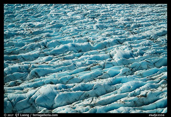 Aerial View of crevasses on Bear Glacier. Kenai Fjords National Park (color)