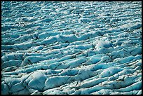 Aerial View of crevasses on Bear Glacier. Kenai Fjords National Park ( color)