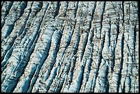 Aerial View of crevassed surface of Bear Glacier. Kenai Fjords National Park ( color)