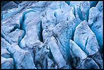 Crevasses on Exit Glacier. Kenai Fjords National Park ( color)