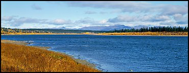 Wide river bordered by grassy banks. Kobuk Valley National Park (Panoramic color)