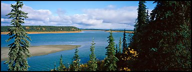 River landscape with forested riverbank. Kobuk Valley National Park (Panoramic color)
