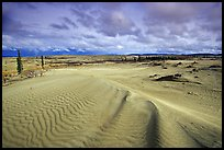 Ripples in the Great Sand Dunes. Kobuk Valley National Park, Alaska, USA. (color)
