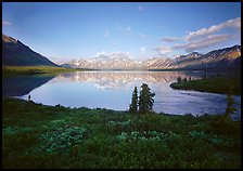Twin Lakes with mountain reflections and green tundra, evening. Lake Clark National Park ( color)