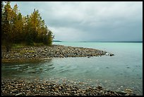 Stream flowing into Lake Clark, Port Alsworth,. Lake Clark National Park ( color)