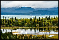 Beaver Pond and Lake Clark. Lake Clark National Park ( color)