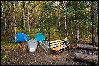 Backcountry campsite. Lake Clark National Park ( color)