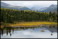 Beaver Pond and mountains. Lake Clark National Park ( color)