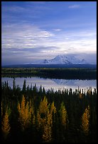 Mt Wrangell reflected in Willow lake, early morning. Wrangell-St Elias National Park ( color)