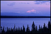 Mt Blackburn above Willow lake, sunset. Wrangell-St Elias National Park ( color)