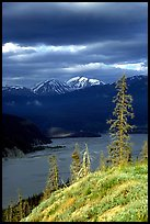 Chitina river under dark clouds. Wrangell-St Elias National Park ( color)